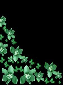 blak green